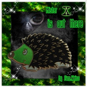 Hedgehog - Mister X