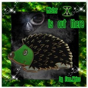 Hedgehog - Mister X